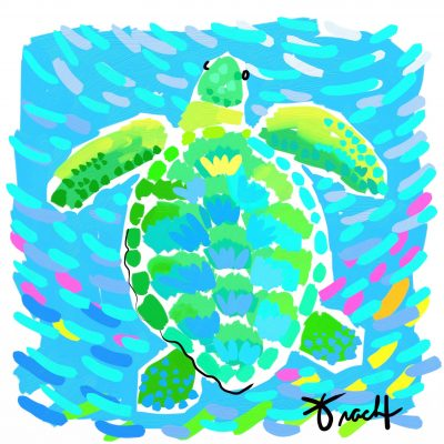 Aqua Sea Turtle Art Print