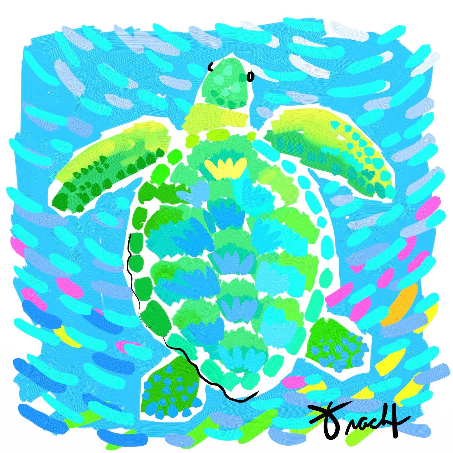 Aqua Sea Turtle Art Print