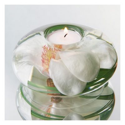 Champagne Magnolia Medium T-Light